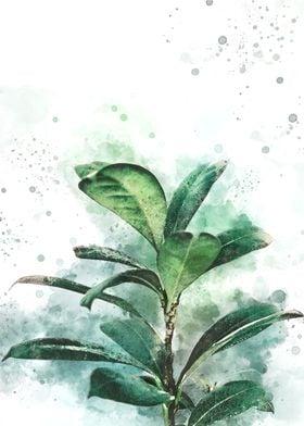 Watercolour Plant