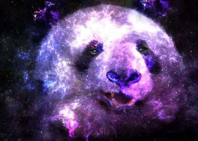 Galaxy Panda Pink Edition