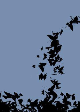 ButterfliesInMusic05