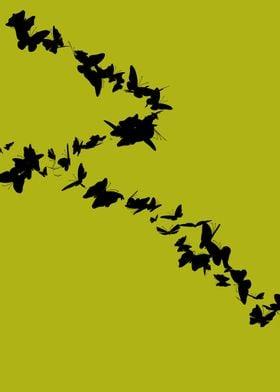 ButterfliesInMusic03