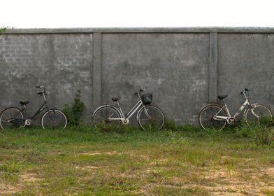 3 Bikes in Siem Reap