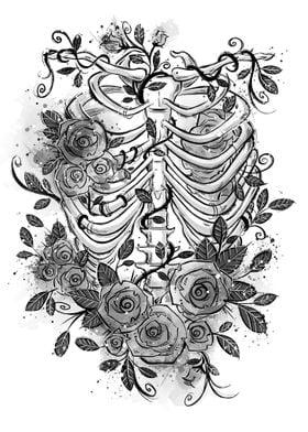 Romantic rib cage