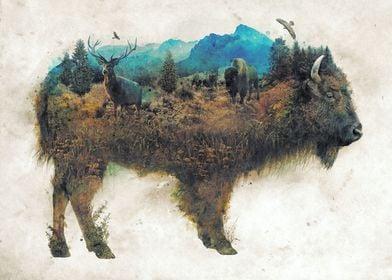 Buffalo Bison Surrealism