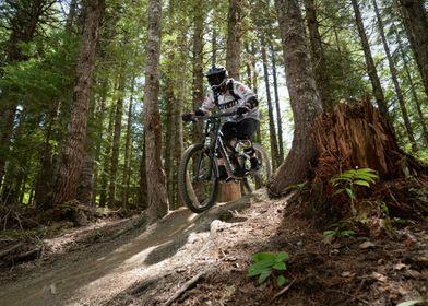 Mountainbiker in action
