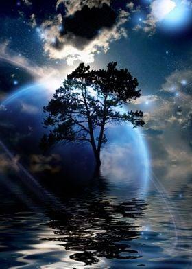 Exosolar planet tree
