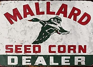 Mallard vintage