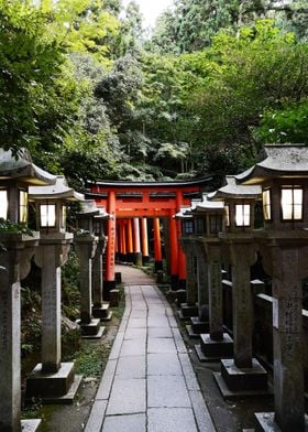 Inari Lantern Path