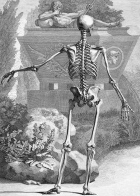 Skeleton at the Tomb