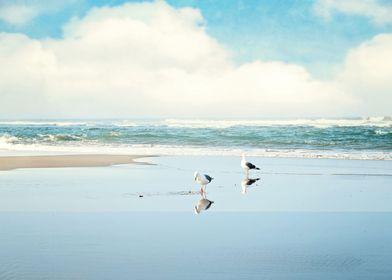 ocean reflections