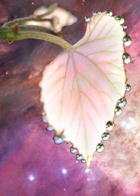 Cosmic dew
