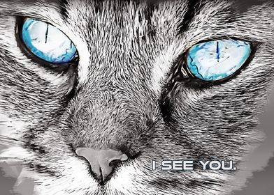 I cat see you