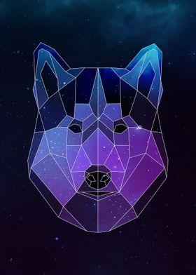 Galaxy Husky