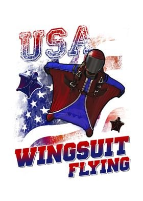USA wingsuit flying
