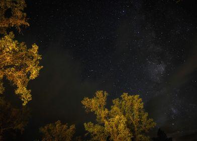 Yosemite Nightsky
