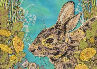 The Dandy Rabbit