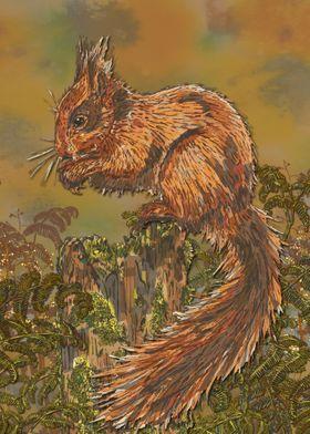 September Squirrel