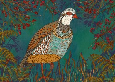 Partridge in the Hedgerow