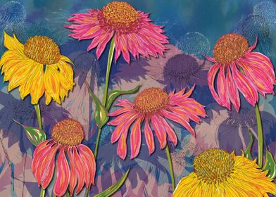 Colourful Coneflowers