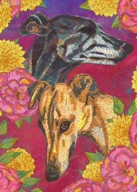 Floral Greyhound Girlies