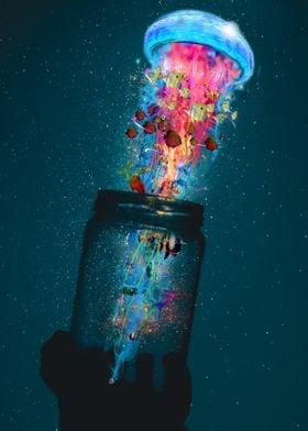 Jellyfish A Jar