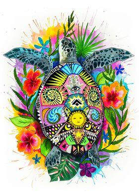 Spiritual turtle