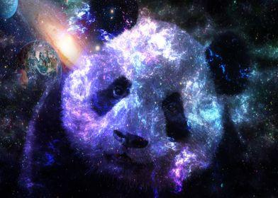Galaxy Baby Panda