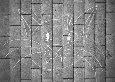 Drawing cat