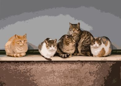 Art cats