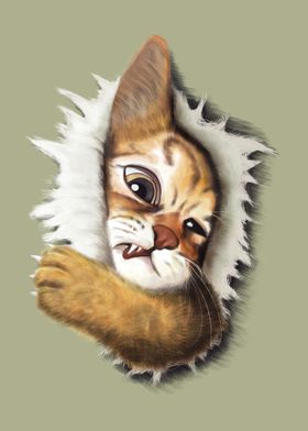Emerge cat