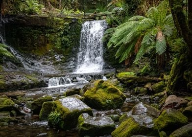 Waterfall in Tasmania