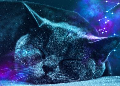 Sleepy Cute Cat Galaxy
