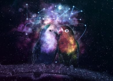 Galaxy Kissing Parrot Love
