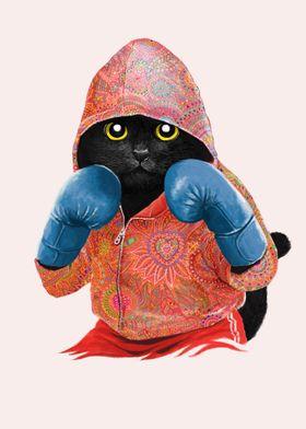 Boxing Cat 2