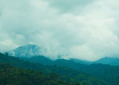 mountain forest cloud