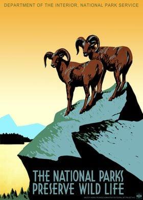 NPS Preserves Wildlife