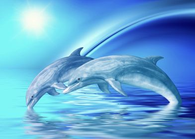 Dolphins Freedom