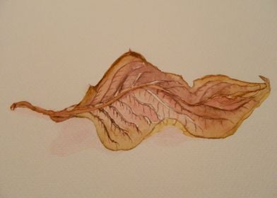 Leaf in watercolor