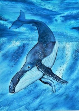 Blue whale in watercolor