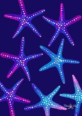 Magenta And Blue Starfish