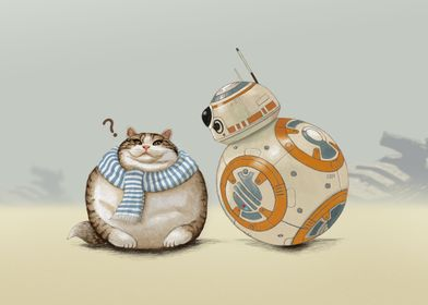 Cat and Droid