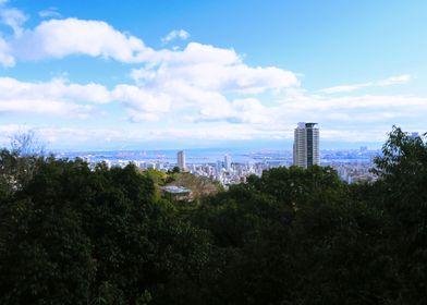 Kobe view