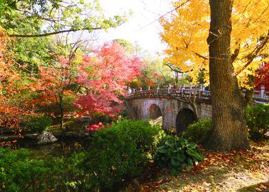 Kyoto Colors