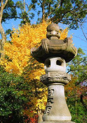 Kyoto yellow