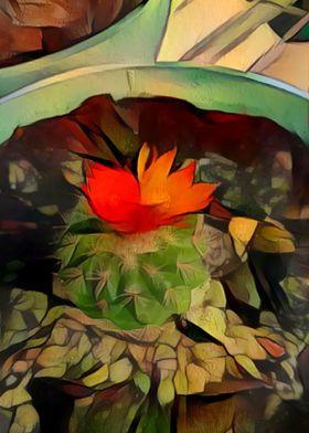 Blooming Cactus Bowl