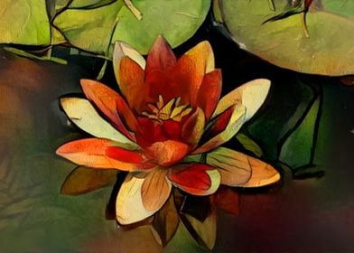 Red and Yellow Water Lily
