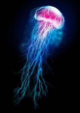 Jellyfish Storm
