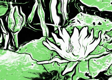 Green Water Lily