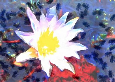 Blue Red Water Lily