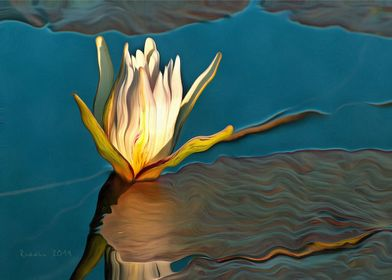 Water Lily on Blue
