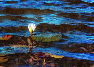 Light Blue Lily Waves